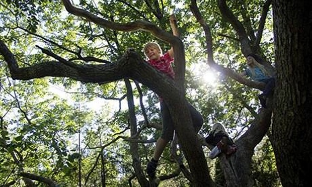 Children-climbing-trees-008